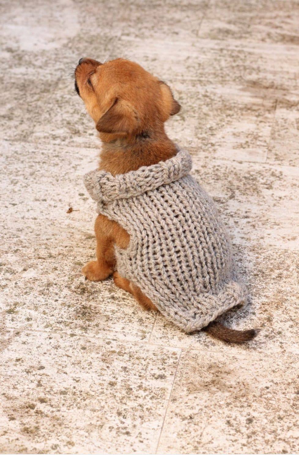 Pet Knitting Patterns Archives Handy Little Me